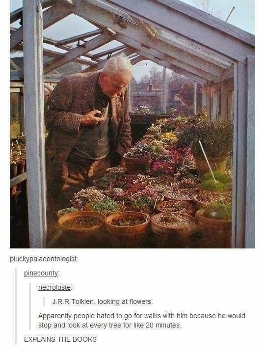 Adaptation - pluckypalaeontologist pinecounty necroluste: | JRR Tolkien, tooking at flowers, Apparently people hated to go for walks with him because he wou stop and look at every tree for like 20 minutes EXPLAINS THE BOOKS