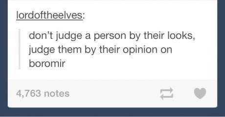 Text - lordoftheelves: don't judge a person by their looks, judge them by their opinion on boromir 4,763 notes