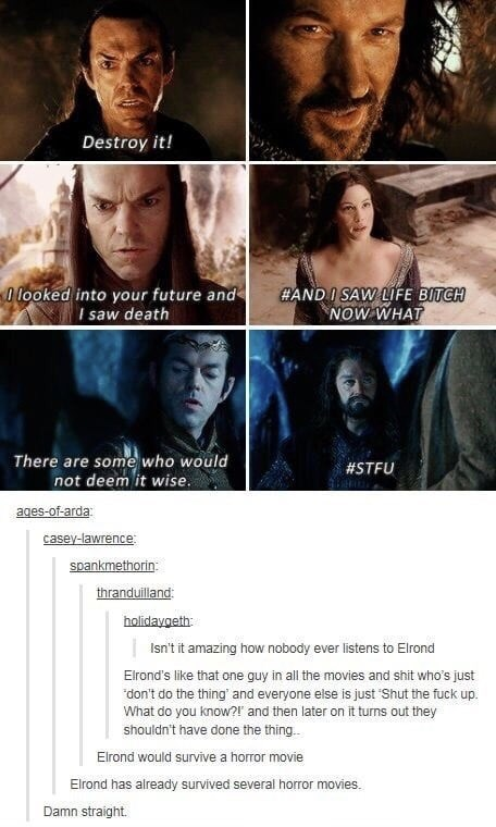 """Facial expression - Destroy it! O looked into your future and I saw death HAND I SAW LIFE BITCH NOW WHAT There are some who would not deem it wise. ages-of-arda #STFU casey-lawrence: spankmethorin: thranduilland: holidaygeth: Isn't it amazing how nobody ever listens to Elrond Elrond's like that one guy in all the movies and shit who's just """"don't do the thing' and everyone else is just Shut the fuck up. What do you know?! and then later on it turns out they shouldn't have done the thing. Elrond"""