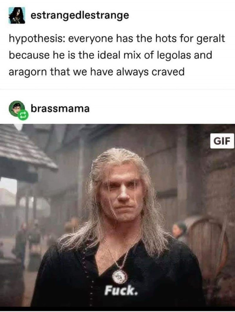 Photo caption - estrangedlestrange hypothesis: everyone has the hots for geralt because he is the ideal mix of legolas and aragorn that we have always craved brassmama GIF Fuck.