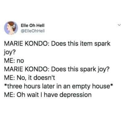 Text - Elle Oh Hell @ElleOhHell MARIE KONDO: Does this item spark joy? ME: no MARIE KONDO: Does this spark joy? ME: No, it doesn't *three hours later in an empty house* ME: Oh wait I have depression