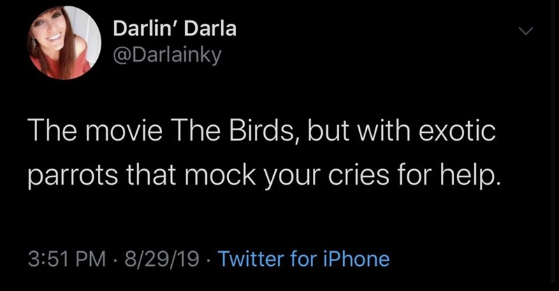 Text - Darlin' Darla @Darlainky The movie The Birds, but with exotic parrots that mock your cries for help. 3:51 PM · 8/29/19 · Twitter for iPhone