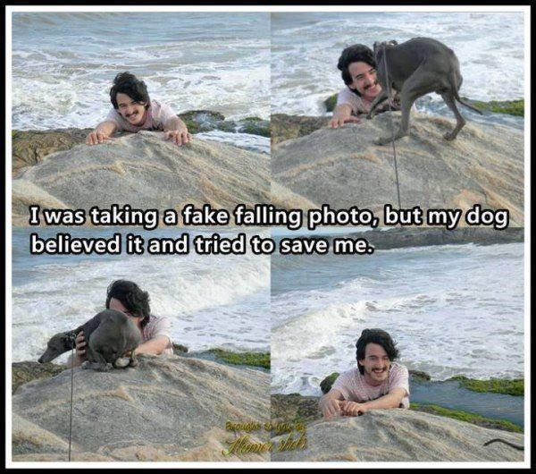 Photograph - I was taking a fake falling photo, but my dog believed it and tried to save me.