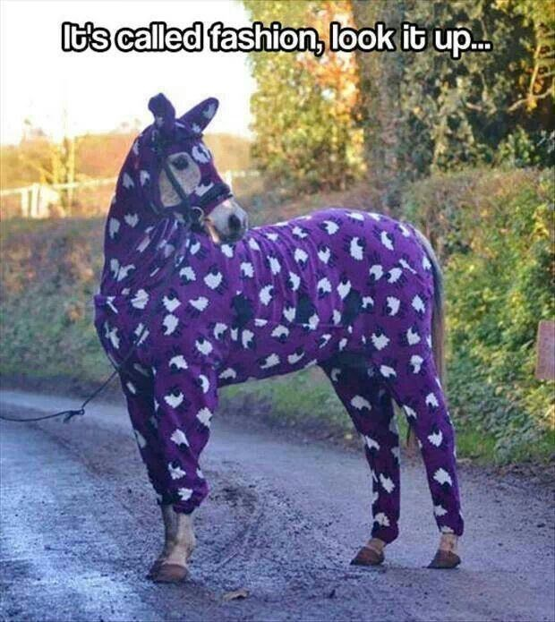 Horse - ts called fashion, look it up.