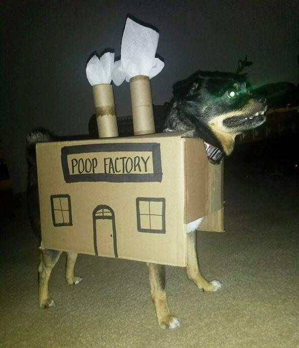 Toy - POOP FACTORY