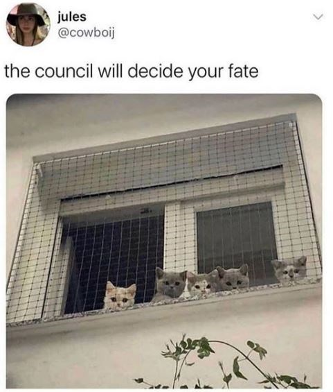 House - jules @cowboij the council will decide your fate