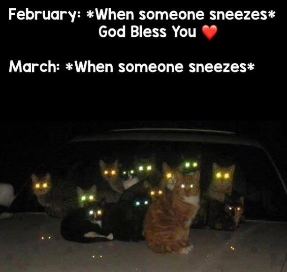 Mode of transport - February: *When someone sneezes* God Bless You March: *When someone sneezes*