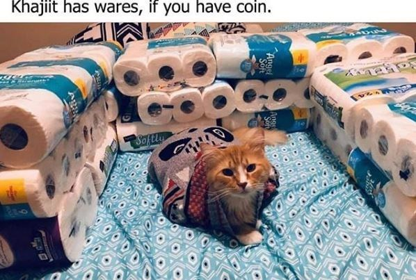 Paper - Khajiit has wares, if you have coin. అe Saftly Reo Angel Sof Angel ৯২১
