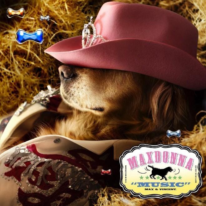 "Cowboy hat - MAXDONNA ** *** 'MUSIC"" MAX & VINCENT."