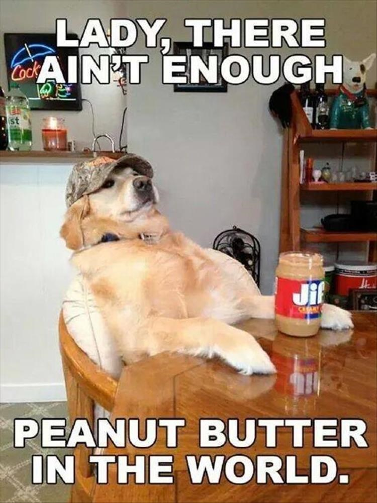Photo caption - LADY, THERE CAIN'T ENOUGH Jif PEANUT BUTTER IN THE WORLD.