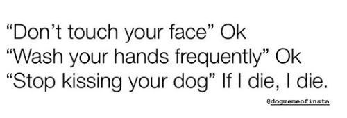 """Text - """"Don't touch your face"""" Ok """"Wash your hands frequently"""" Ok """"Stop kissing your dog"""" If I die, I die. edogmemeofinsta"""