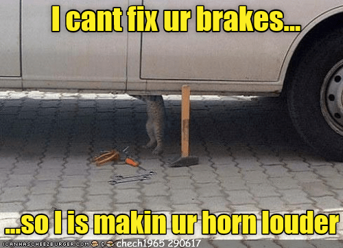 Cat - Automotive tire - I cant fix ur brakes. solis makin ur hornlouder 0CANHASCHEEROURGER.COM Se chech1965 290617