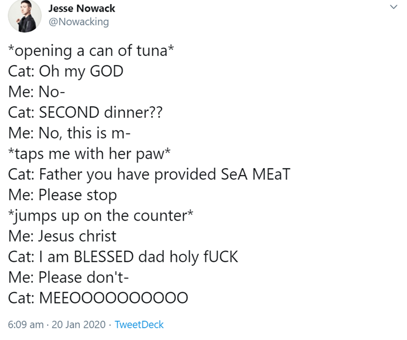 Text - Jesse Nowack @Nowacking *opening a can of tuna* Cat: Oh my GOD Me: No- Cat: SECOND dinner?? Me: No, this is m- *taps me with her paw* Cat: Father you have provided SeA MEAT Me: Please stop *jumps up on the counter* Me: Jesus christ Cat: I am BLESSED dad holy FUCK Me: Please don't- Cat: MEEOOO0000000 6:09 am · 20 Jan 2020 · TweetDeck