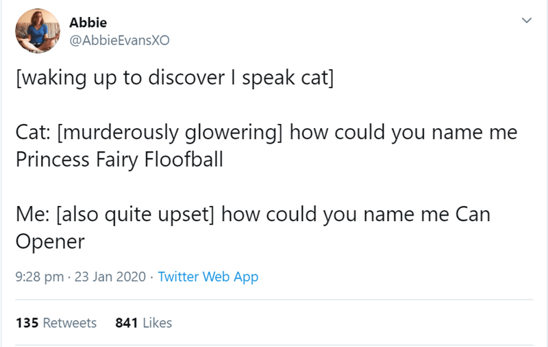 Text - Abbie @AbbieEvansXO [waking up to discover I speak cat] Cat: [murderously glowering] how could you name me Princess Fairy Floofball Me: [also quite upset] how could you name me Can Opener 9:28 pm · 23 Jan 2020 · Twitter Web App 135 Retweets 841 Likes
