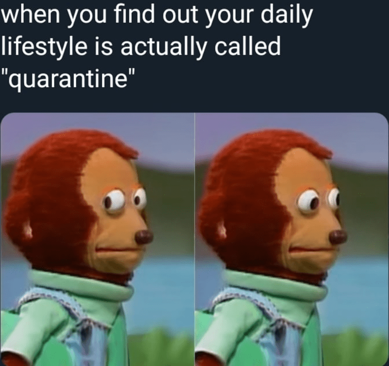 "Funny meme that reads, ""When you find out your daily lifestyle is actually called 'quarantine'"" above images of the nervous monkey looking around"