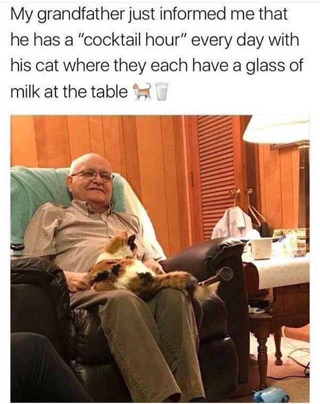 """Human - My grandfather just informed me that he has a """"cocktail hour"""" every day with his cat where they each have a glass of milk at the table"""