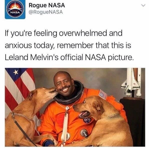 Human - Rogue NASA @RogueNASA NASA If you're feeling overwhelmed and anxious today, remember that this is Leland Melvin's official NASA picture.