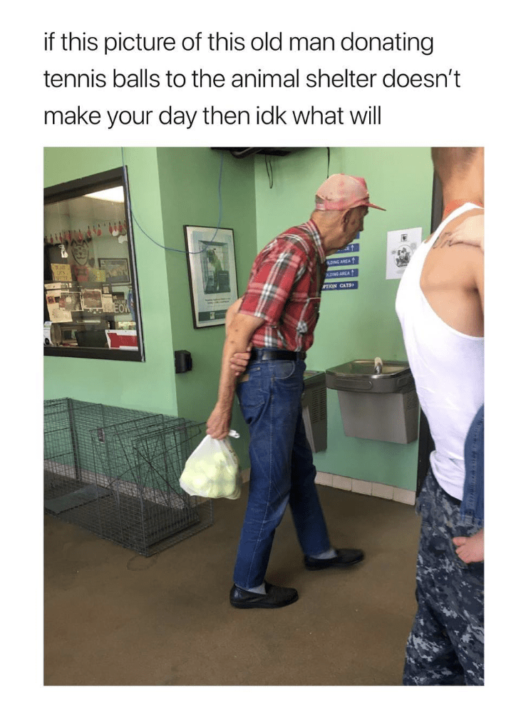Denim - if this picture of this old man donating tennis balls to the animal shelter doesn't make your day then idk what will LUNG AREA AONG AREA TION CATS