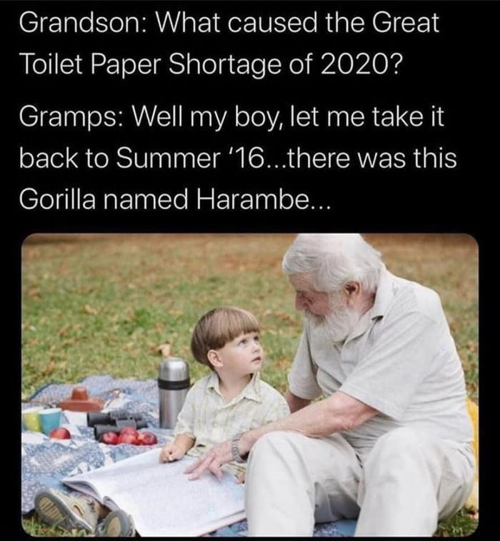 Text - Grandson: What caused the Great Toilet Paper Shortage of 2020? Gramps: Well my boy, let me take it back to Summer '16...there was this Gorilla named Harambe...
