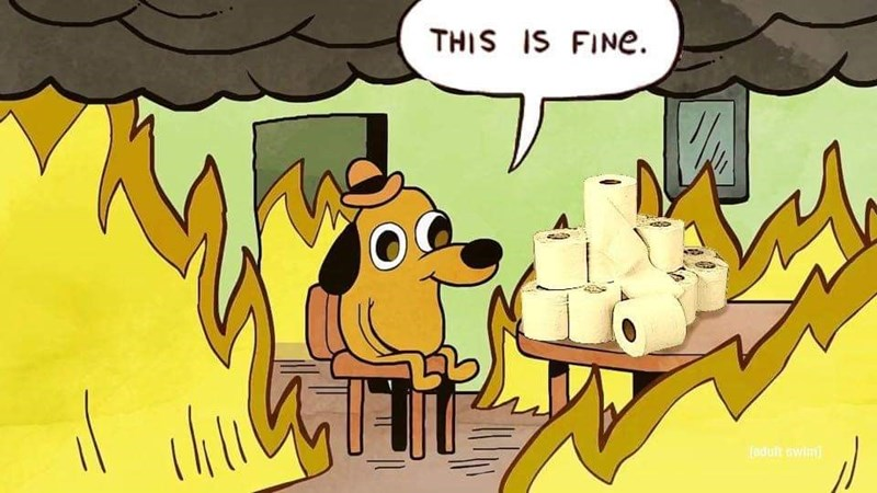 Cartoon - THIS IS FINE. (adult ewim