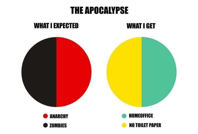 Text - THE APOCALYPSE WHAT I EXPECTED WHAT I GET ●● ANARCHY HOMEOFFICE ZOMBIES NO TOILET PAPER