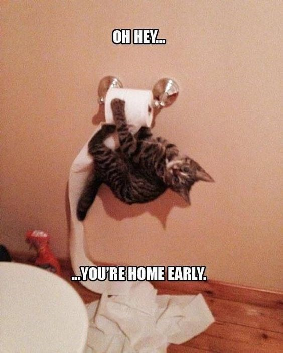 Photo caption - ОН НЕ.. YOU'RE HOME EARLY.