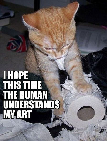 Cat - |НОРЕ THIS TIME THE HUMAN UNDERSTANDS MY ART