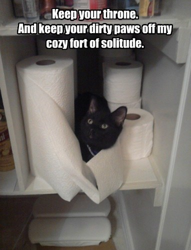 Cat - Keep your throne. And keep your dirty paws off my Cozy fort of solitude.