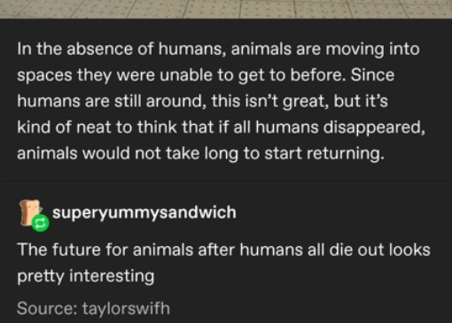 Text - In the absence of humans, animals are moving into spaces they were unable to get to before. Since humans are still around, this isn't great, but it's kind of neat to think that if all humans disappeared, animals would not take long to start returning. superyummysandwich The future for animals after humans all die out looks pretty interesting Source: taylorswifh