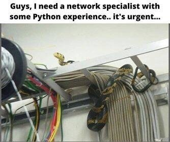 Text - Auto part - Guys, I need a network specialist with some Python experience.. it's urgent.