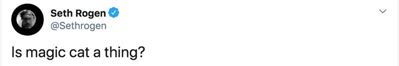 White - Seth Rogen @Sethrogen Is magic cat a thing?