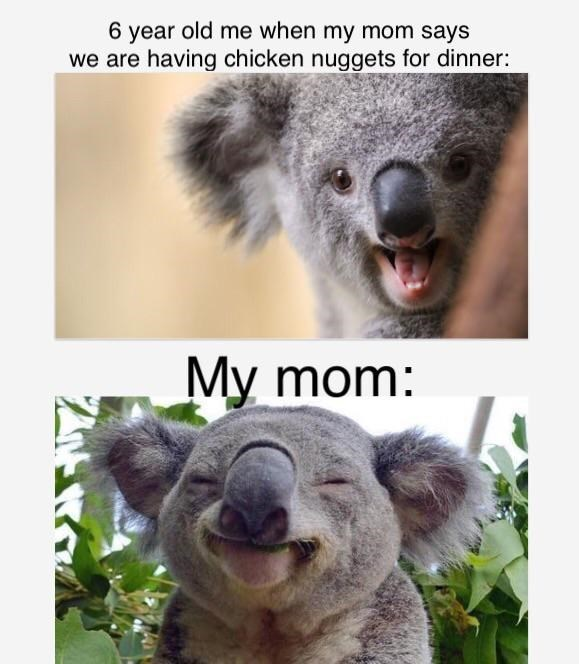 Koala - 6 year old me when my mom says we are having chicken nuggets for dinner: My mom: