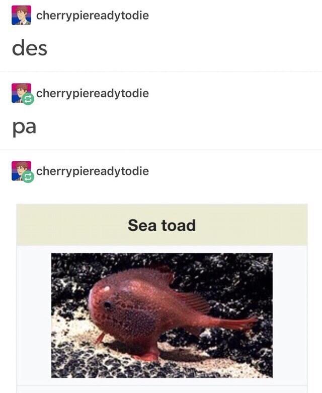 Text - cherrypiereadytodie des cherrypiereadytodie pa cherrypiereadytodie Sea toad