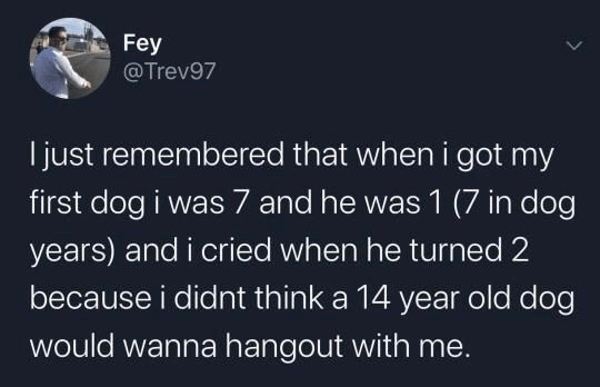 Text - Fey @Trev97 I just remembered that when i got my first dog i was 7 and he was 1 (7 in dog years) and i cried when he turned 2 because i didnt think a 14 year old dog would wanna hangout with me.