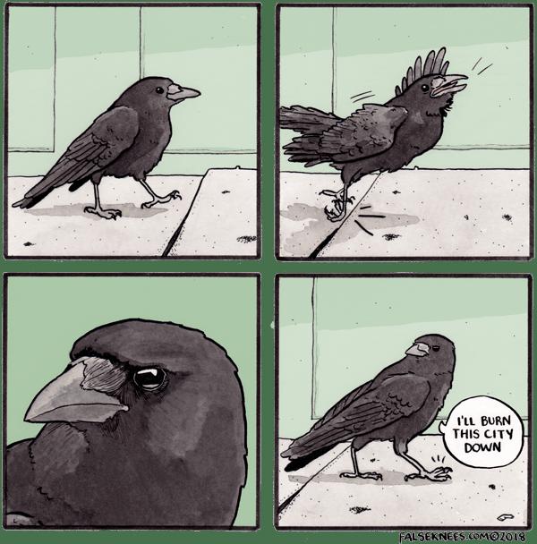 Bird - l'LL BURN THIS CITY DOWN FALSEKNEES.COM@2018