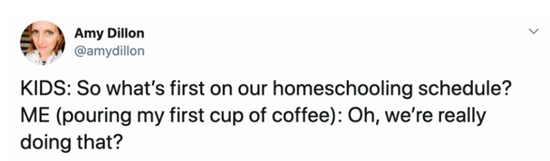 Text - Amy Dillon @amydillon KIDS: So what's first on our homeschooling schedule? ME (pouring my first cup of coffee): Oh, we're really doing that?