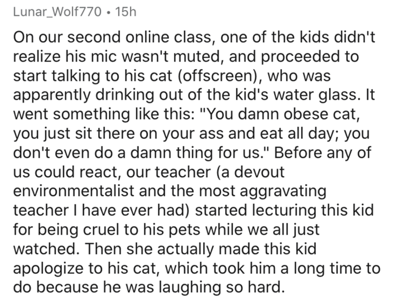 """Text - Lunar_Wolf770 • 15h On our second online class, one of the kids didn't realize his mic wasn't muted, and proceeded to start talking to his cat (offscreen), who was apparently drinking out of the kid's water glass. It went something like this: """"You damn obese cat, you just sit there on your ass and eat all day; you don't even do a damn thing for us."""" Before any of us could react, our teacher (a devout environmentalist and the most aggravating teacher I have ever had) started lecturing this"""