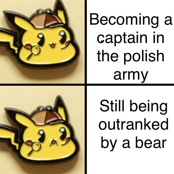 Cartoon - Becoming a captain in the polish army Still being outranked by a bear