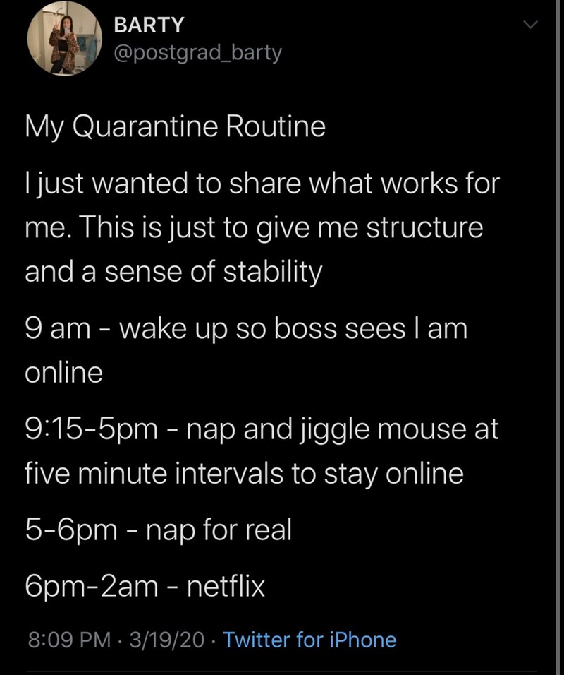 Text - BARTY @postgrad_barty My Quarantine Routine I just wanted to share what works for me. This is just to give me structure and a sense of stability 9 am - wake up so boss sees I am online 9:15-5pm - nap and jiggle mouse at five minute intervals to stay online 5-6pm - nap for real 6pm-2am - netflix 8:09 PM · 3/19/20 · Twitter for iPhone