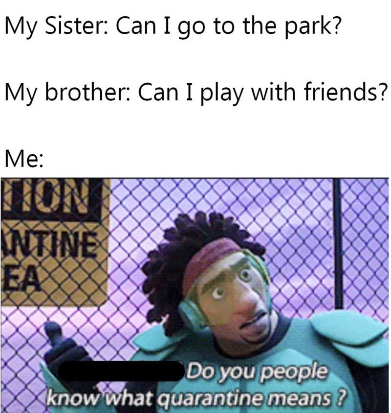 Text - My Sister: Can I go to the park? My brother: Can I play with friends? Me: HON INTINE EA Do you people know what quarantine means ?