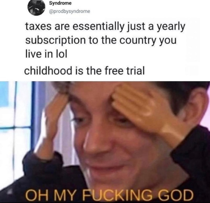 Face - Syndrome @prodbysyndrome taxes are essentially just a yearly subscription to the country you live in lol childhood is the free trial OH MY FUCKING GOD