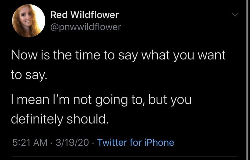 Text - Red Wildflower @pnwwildflower Now is the time to say what you want to say. I mean l'm not going to, but you definitely should. 5:21 AM · 3/19/20 · Twitter for iPhone