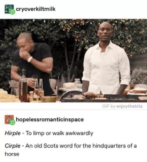 Chef - cryoverkiltmilk GIF by enjoythebits hopelessromanticinspace Hirple - To limp or walk awkwardly Cirple - An old Scots word for the hindquarters of a horse