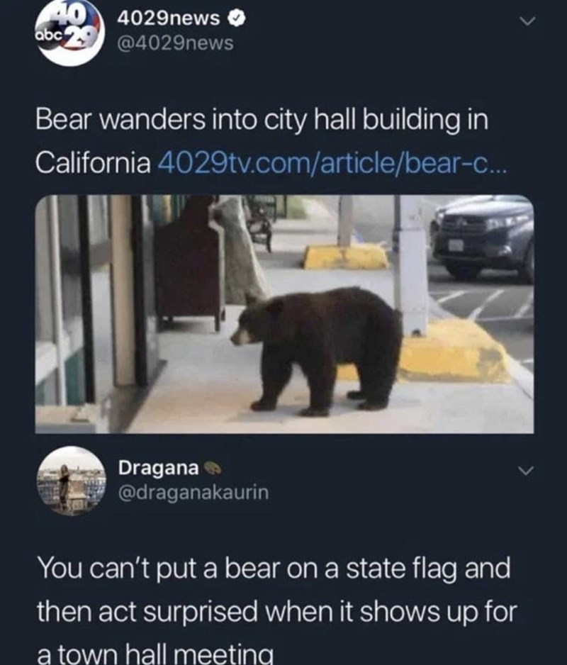 Bear - 40 4029news abc @4029news Bear wanders into city hall building in California 4029tv.com/article/bear-c.. Dragana @draganakaurin You can't put a bear on a state flag and then act surprised when it shows up for a town hall meeting