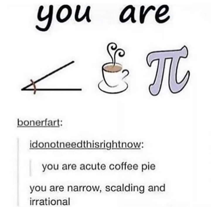 Text - you you are bonerfart: idonotneedthisrightnow: you are acute coffee pie you are narrow, scalding and irrational