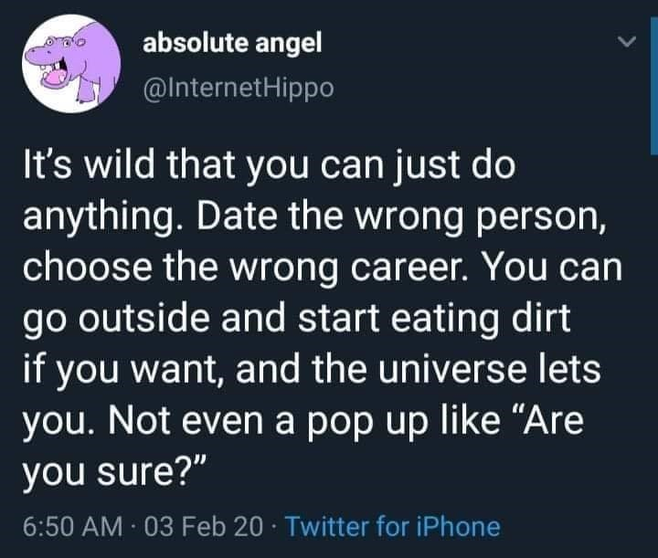 """Text - absolute angel @InternetHippo It's wild that you can just do anything. Date the wrong person, choose the wrong career. You can go outside and start eating dirt if you want, and the universe lets you. Not even a pop up like """"Are you sure?"""" 6:50 AM 03 Feb 20 · Twitter for iPhone"""