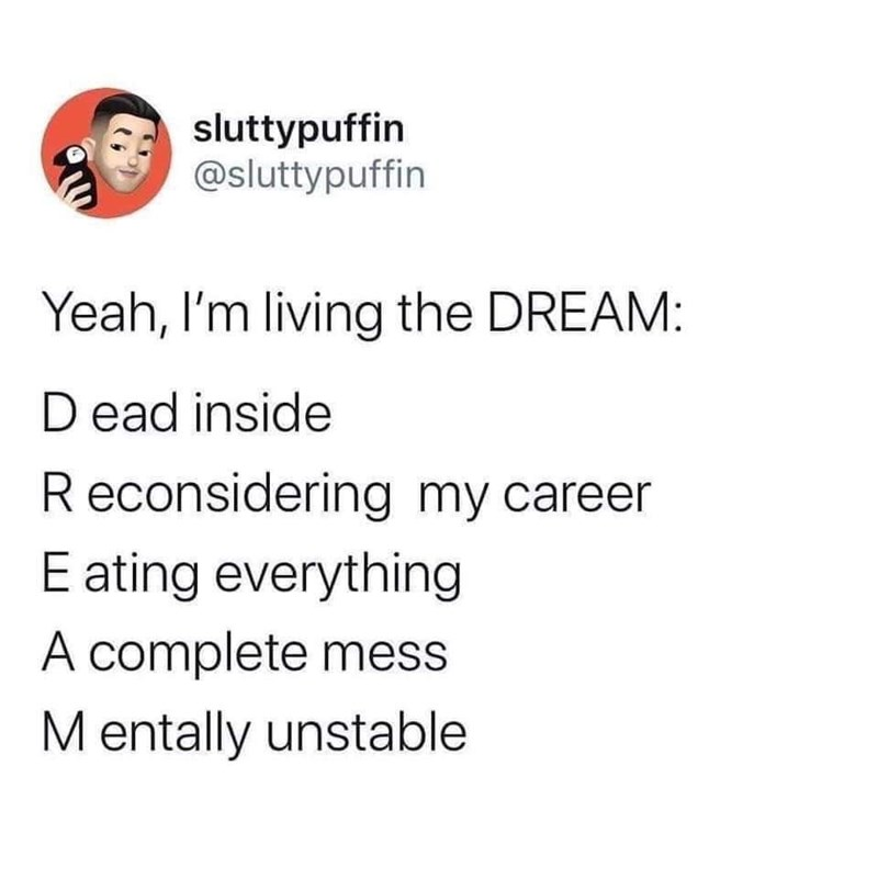 Text - sluttypuffin @sluttypuffin Yeah, I'm living the DREAM: D ead inside Reconsidering my career E ating everything A complete mess Mentally unstable