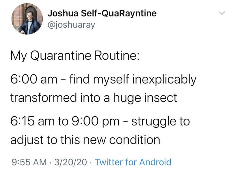 Text - Joshua Self-QuaRayntine @joshuaray My Quarantine Routine: 6:00 am - find myself inexplicably transformed into a huge insect 6:15 am to 9:00 pm - struggle to adjust to this new condition 9:55 AM · 3/20/20 · Twitter for Android