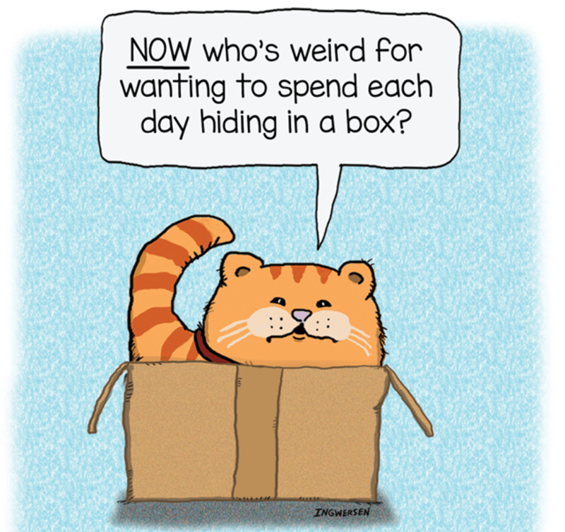 Cartoon - NOW who's weird for wanting to spend each day hiding in a box? INGWERSEN