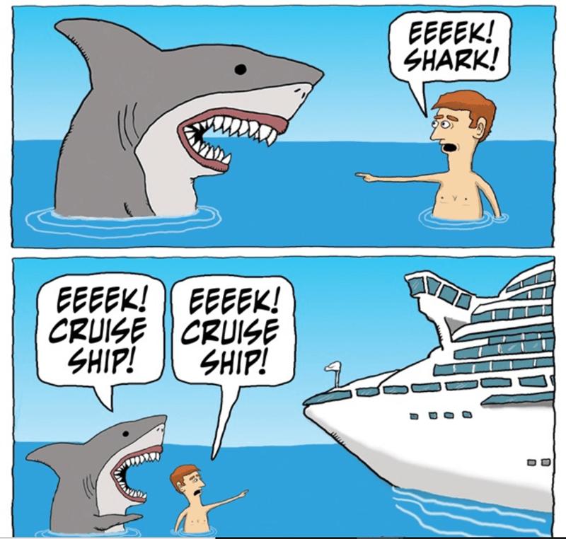 Cartoon - EEEEK! SHARK! EEEEK! EEEEK! CRUISE CRUISE SHIP! SHIP!